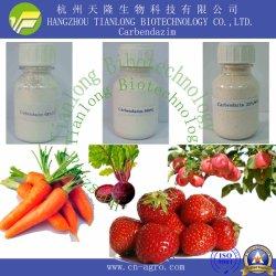 كاربندازيم (98%TC,500SC,50%WP) - مبيد للفطريات