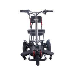 Vitesse élevée de la mobilité électrique Trike scooter avec le moteur pour dames
