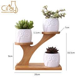 Home Office Desk сад мини кактуса Pot 3 уровня бамбук Saucers держателя стойки