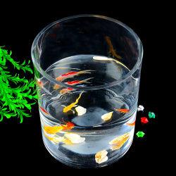 Venda por grosso de acrílico transparente do tanque de peixes de aquário do Cilindro