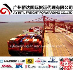 بحث شحن من الصين إلى بليز