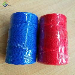 2mm/3mm Polyäthylen PET verdrehtes Schnur-Seil mit kundenspezifischer Farbe