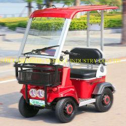 China Factory Smart Vehicle en Four Wheels Electric Mini Golf Auto