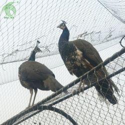 Cuerda de alambre de acero inoxidable Alojamiento Animal Zoo Ave de malla malla tipo férula