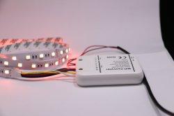 5 ألوان CRI>90 Rgbww Magic LED شريط رقمي مرن أحدث 12 فولت DCV مخصص Strip Lighting 5050 4 في 1 Chip LED Light Bar