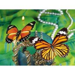 DIY Butterfly Square Rhinestone Diamond peinture Dlh1011
