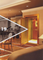 FUJI Mitsubishi Schindler Kone pasajero Home ascensor ascensor