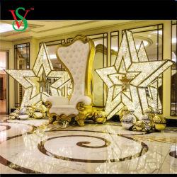 3D LED Motiv-im Freien beleuchtetes Stern-WeihnachtsEinkaufszentrum-Dekoration-Licht