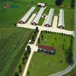 조립식 닭 농가가 자동적인 층 보일러 가금에 의하여 디자인 유숙한다