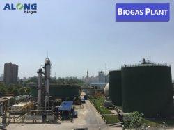 De anaërobe Installatie van het Biogas van het Type van Tank van de Reactor onder de Wijze van EPS (Techniek, Verwerving, Bouw)