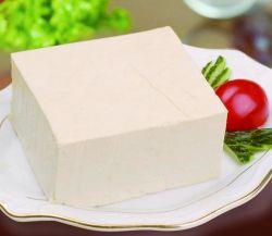 Macchina automatica per tofu in acciaio inox