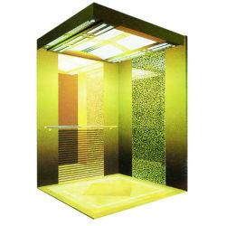 Type à haute efficacité énergétique en acier inoxydable Accueil Résidentiel passager Villa Panoramique ascenseur
