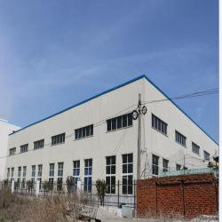 Het nieuwe Pakhuis van de Structuur van het Staal voor Fruit Storge