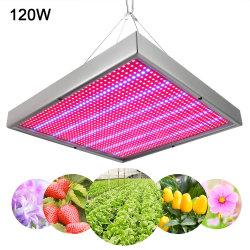 Ali express vend chaud LED 120 W panneau bon marché croître la lumière