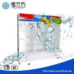 エネルギー効率が良い縦の表示フリーザーの直立したガラスドアのフリーザーのコマーシャル