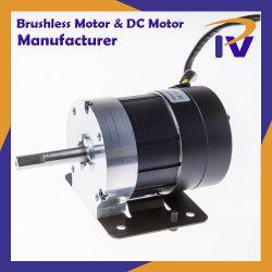 永久マグネット24V 48Vは速度PmブラシレスBLDCを調節するか、またはセリウムが付いているDCの電動機にブラシをかける