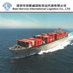 Servizio del contenitore del mare/logistica trasporto internazionale/spedizioniere trasporto marittimo (FCL 20 '' 40 '')