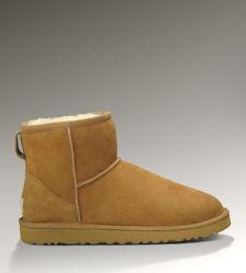 As mulheres Classic Mini botas de neve Botas de Inverno