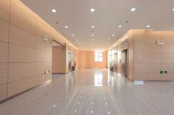 容易新しいデザイン耐火性PVC内部の装飾的なビニールの壁カバーのインポートの中国の商品をインストールしなさい