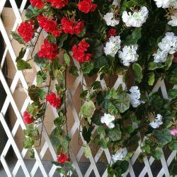 bloem van de Begonia van 112cm de Lange Kunstmatige Rode voor het Hangende Decor van de Muur