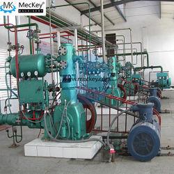Vc等級のソルビトールの生産のためのMeckeyのターンキープロジェクト