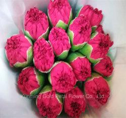 De merveilleux cadeaux de haute qualité de fleurs coupées fraîches oeillet rouge pour la décoration intérieure Bouquet