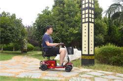 Moteur de scooter électrique populaire désactivé avec la CE et la certification de la FDA