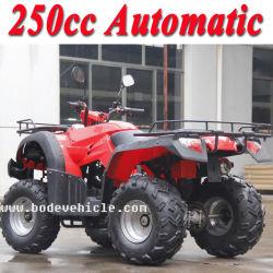 Nouveau 250cc Bode VTT Quad automatique (MC-356)