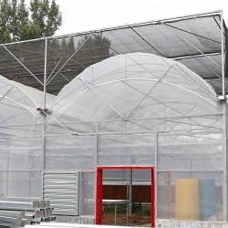 Melhor vender as emissões de gases com efeito de película de plástico de cobertura