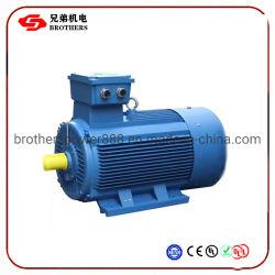 Ye2 0.12-315kw承認される企業のセリウムのための低いVotageのユニバーサルIe2効率の三相誘導AC電動機