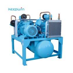 2021 Venta caliente de 0,4 m3/min -3.0m3/min 2bar - 10 bar el pistón compresor de aire para pintar el lavado de coches