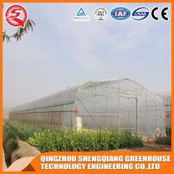 С пластиковой пленки используется в коммерческих целях выбросов парниковых газов с помощью системы гидропоники