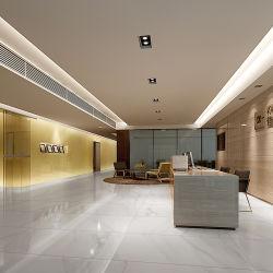 Vloer grote geglazuurde porseleinen Tegels Interieur muur Grafisch ontwerp, 3D Model Design Hotel Lederen imitatie textuur gepolijst afwerking