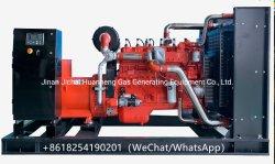 312kVA 250kw GNL Gás Natural de GNC Biogás Potência geral pelo motor Cummins