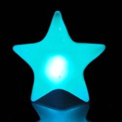 Vervaardiging van LEIDEN Licht op het LEIDENE van de Ster van Producten Opvlammende Kenteken van de Naam
