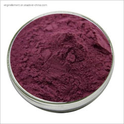 Cranberry Extract Proanthocyanidins Cranberry Fruit Powder Fabrik Preis