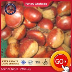 Baixo teor natural de frutos secos orgânicos cortados em forma salmoura Processo de Preservação