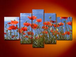 La moderna decoración de pared Arte Floral hermoso Lienzo de la pintura (FL5-010)