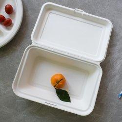 Caixa de almoço bagaço biodegradáveis do habitáculo