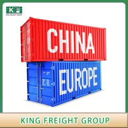 Морские грузовые перевозки грузы из Китая в Европу Нидерланды и Бельгия/UK/франка/Германия и Италия и Испания / Румыния/Чешской и Словацкой/Венгрия