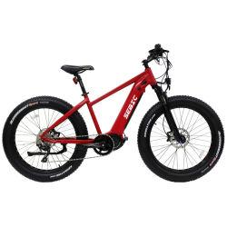 Todo terreno Grande Dural Power Performance Bateria dupla Bafang Mid-Motor 750W 1000W Fat bicicleta eléctrica