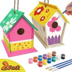 4-8가 아이를 위한 기술에 의하여 - 2pack DIY 새 집 장비 - 소녀를 위한 구조 그리고 페인트 새장 (페인트 & 솔을 포함한다) 나무로 되는 예술 나이 든다