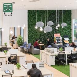 Pet Lampshade Tiange luz acústica para el hogar decoración de oficina