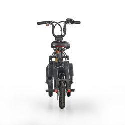 3つの車輪のバイクを折るE6-7 Ebike 250W 36Vの自転車