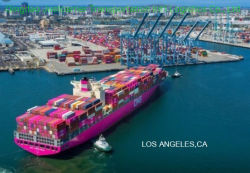 Migliore spedizioniere professionale del trasporto marittimo che spedice alla porta dell'America
