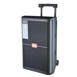 15-дюймовый открытый большой мощности для караоке с беспроводными громкоговоритель передвижного блока и системы голосового оповещения