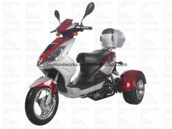 熱い電気3車輪Trike