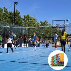 ملعب الكرة الطائرة القابل للنفخ / الملعب / الكرة الطائرة