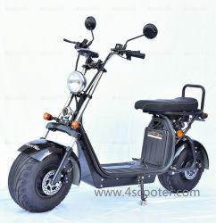 도매 베스트 EEC Coc CE 준법 중국 성인 1000W 1500W 2000W 6000W 60V 2륜 Eporider Fat Tire 전기 모터 자전거 자전거 자전거 우싱 전기 전기 스쿠터