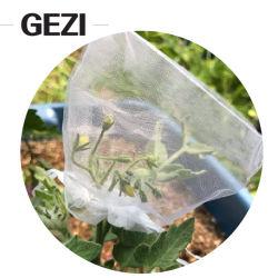Greenhouse Green Net을 위한 망고 과일 코브 메시 네트팅 정원 토마토 식물 보호구